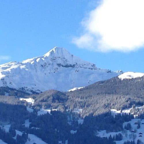 Grindelwald (14)