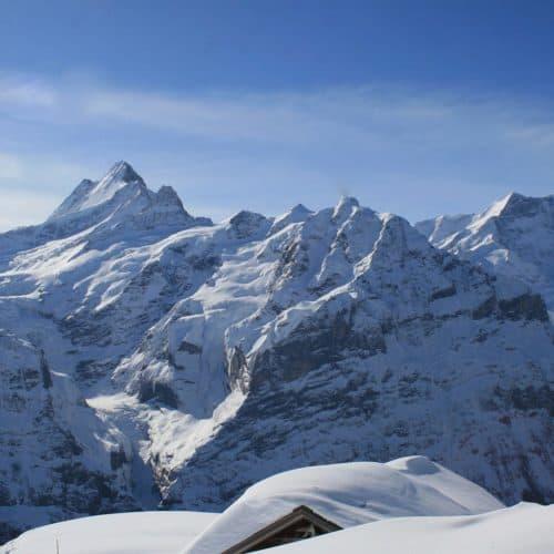 Grindelwald (7)