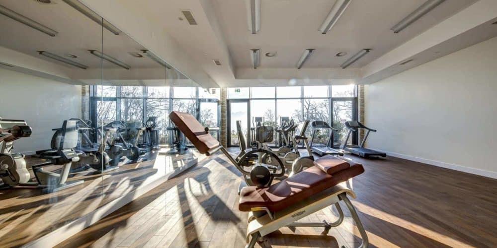 Luxury real estate in Switzerland Pelerin Palace fitness room