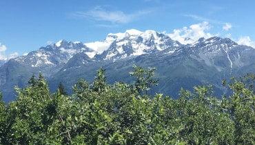 alpine property search verbier tile